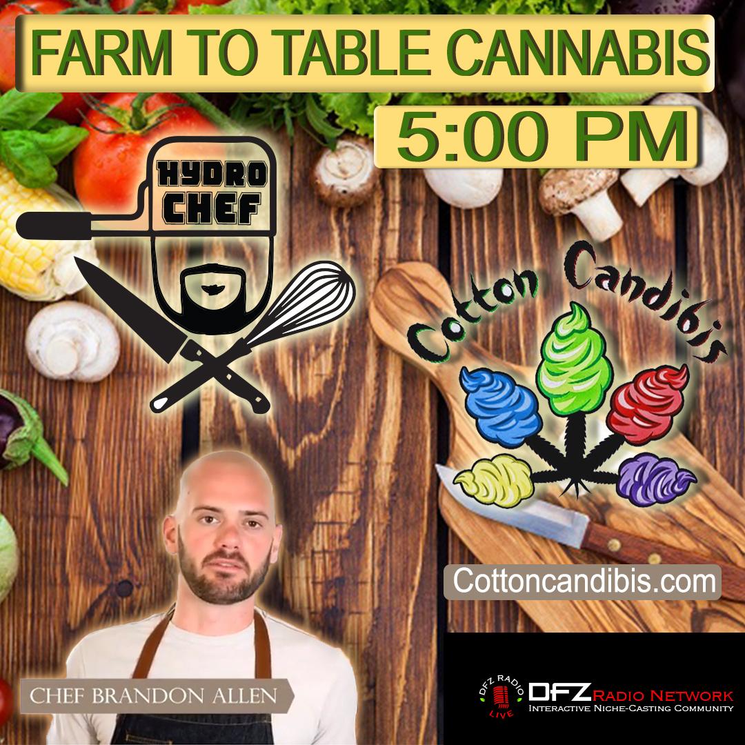 FTTCannabis ep # 5 w/ A.WAL of Cottoncandibis.com ,Chef Brandon Allen of eatdrinkcannabis.com @chefbrandonallen 7-25-17