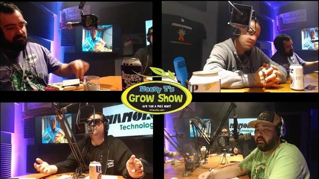 Heavy T Grow Show w/ Mammoth P Vaedynn Erlandson and Colin Bell , Chris Husong Elixinol
