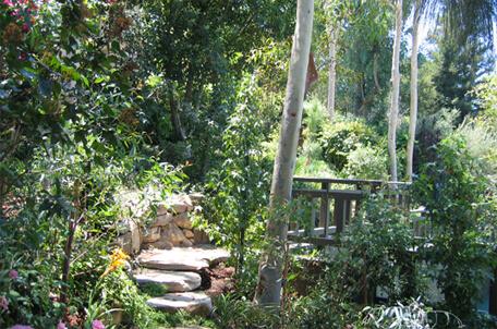 Japnese Garden - Encino