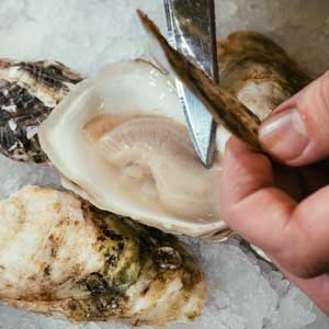 oyster food near-Raw Bar by Slapfish-Huntington Beach-CA
